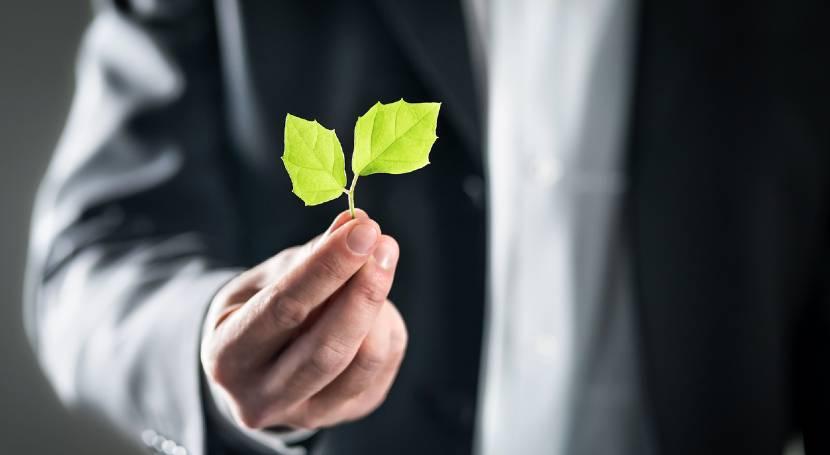 Efficientamento energetico per le aziende